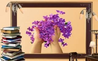 Поздравления библиотекарю в прозе. Поздравления библиотекарю в стихах — май — календарные праздники — поздравления — пожелания в стихах, открытки, анимашки