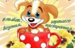 Пожелания с добрым днем любимой девушке. Пожелания хорошего дня. Что можно сказать доброго