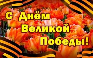 Поздравления с победой 9 мая короткие. Праздник по слезами на глазах: красивые поздравления ветеранов с Днем Победы