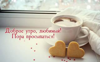 Открытки с пожеланием доброго утра для мужчины. С добрым утром, любимая: подборка милых картинок