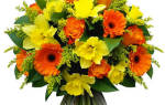 Цветы красками с днем рождения. Красивый букет с днем рождения (54 картинки с пожеланиями). С днем Рождения