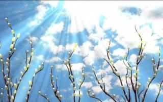 С праздником вербного воскресенья красивые открытки. Поздравления с вербным воскресеньем в картинках. Красивые и короткие поздравления с Вербным воскресеньем