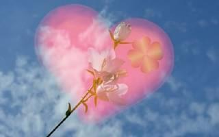 С днем валентина пожелания. Пожелание в День святого Валентина. Что говорить любимым и друзьям