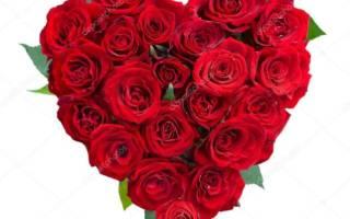 Поздравления с днем святого валентина семейной паре. Стихи с днем святого валентина семейной паре