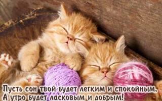 Доброй ночи ненаглядная открытки. Подборка картинок с пожеланиями доброй ночи и сладких снов